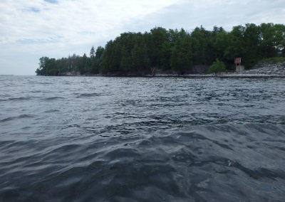 Lake Champlain Aquatic Habitat Assessment (Transmission Line Replacement)