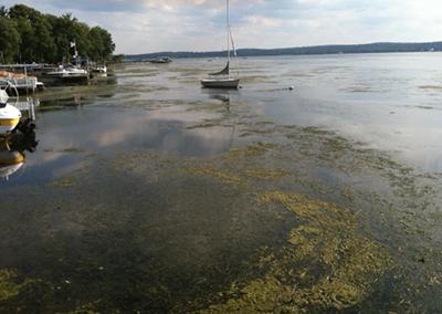 Chautauqua Lake Dredging Feasibility Study