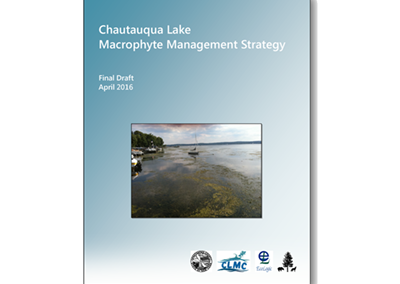 Chautauqua Lake Macrophyte Management Strategy