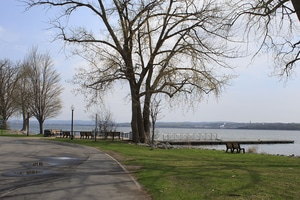Onondaga Lake Beach Feasibility and Design Study